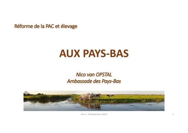 Paris – 20 Novembre, 2014 1  Réforme de la PAC et élevage  AUX PAYS‐BAS  Nico van OPSTAL  Ambassade des Pays‐Bas