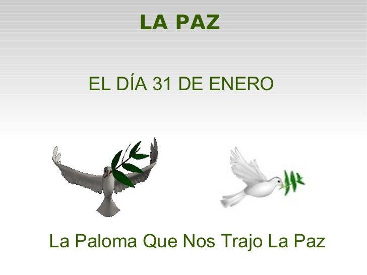LA PAZ   La Paloma Que Nos Trajo La Paz EL DÍA 31 DE ENERO