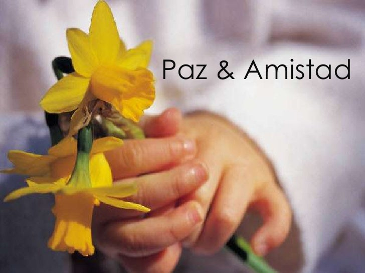 Paz & Amistad<br />