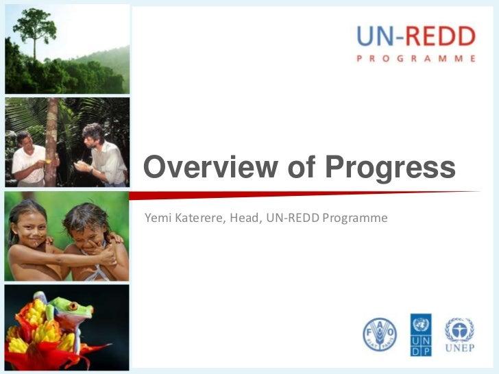 Overview of Progress<br />Yemi Katerere, Head, UN-REDD Programme<br />