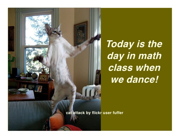 Today is the                      day in math                      class when                       we dance!   cat attack...