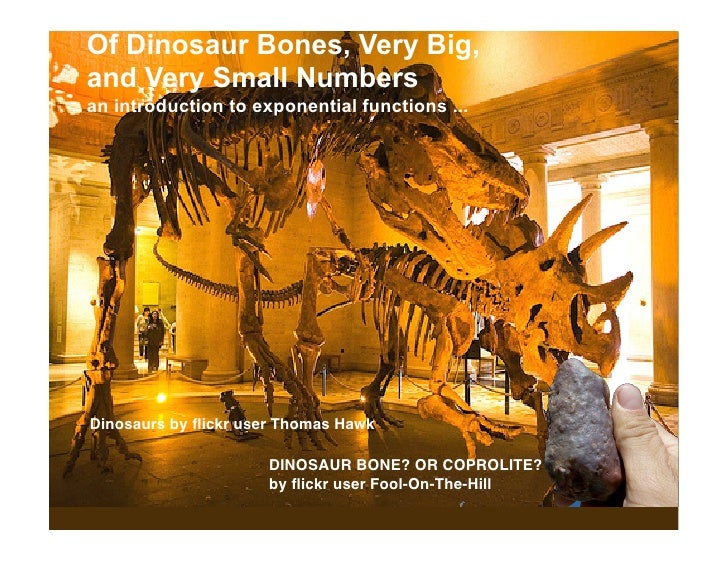 Of Dinosaur Bones, Very Big, and Very Small Numbers an introduction to exponential functions ...     Dinosaurs by flickr us...