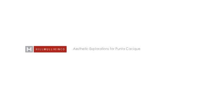 Aesthetic Explorations for Punta Cacique