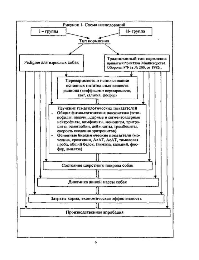 Схема исследований I - группа