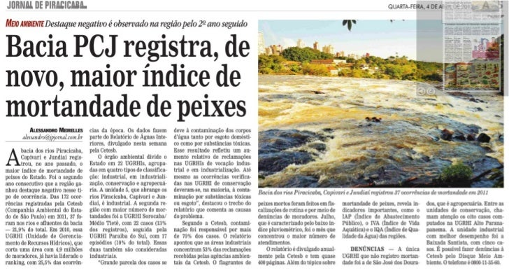 Bacias PCJ registra, de novo, maior índice de mortandade de peixes