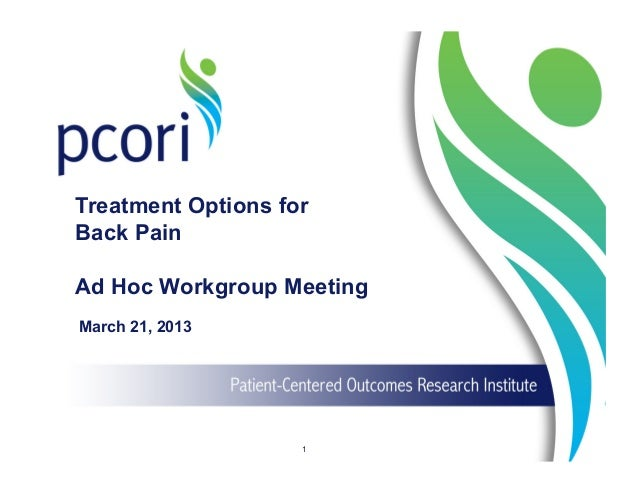 Treatment Options for Back Pain Ad Hoc Workgroup Meeting March 21, 2013 1