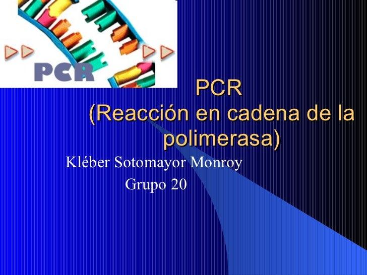 PCR  (Reacción en cadena de la polimerasa) Kléber Sotomayor Monroy  Grupo 20