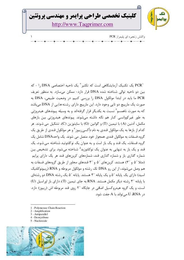 کلینیک تخصصی طراحی پرایمر و مهنذسی پروتئین http://www.Taqprimer.com واکنش زنجيره ای پليمراز  PCR  1  1 PCR...
