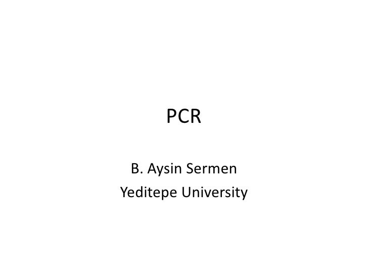 Pcr aysin