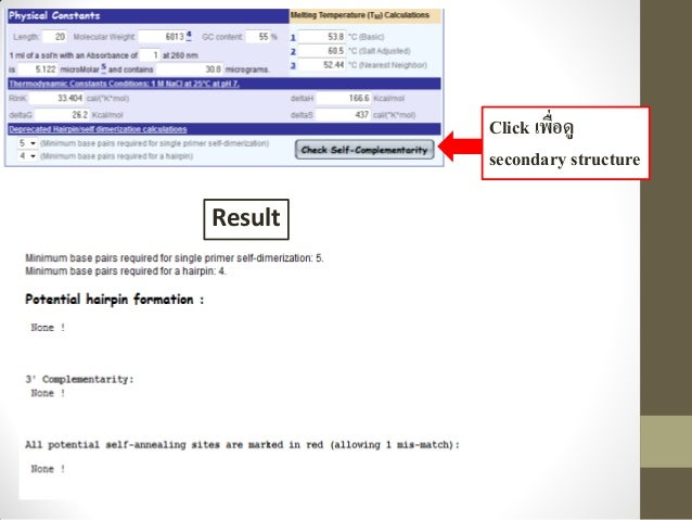 PCR primer d... Reverse Complement Calculator
