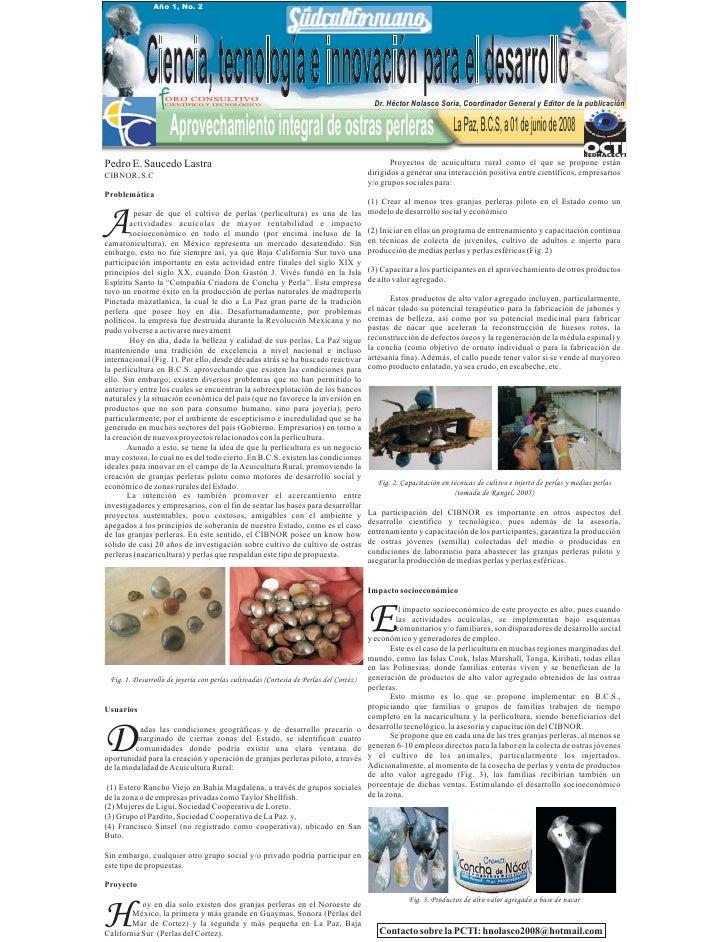 Año 1, No. 2                  Ciencia, tecnología e innovación para el desarrollo                    ORO CONSULTIVO       ...