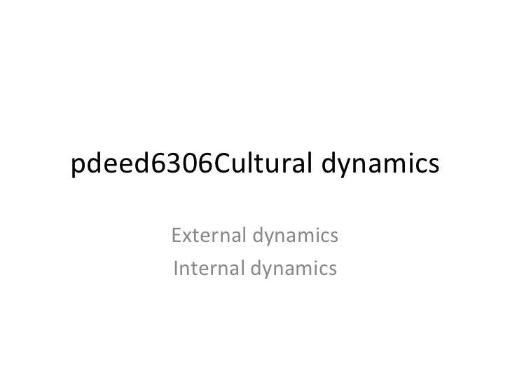 pdeed6306Cultural dynamics External dynamics Internal dynamics