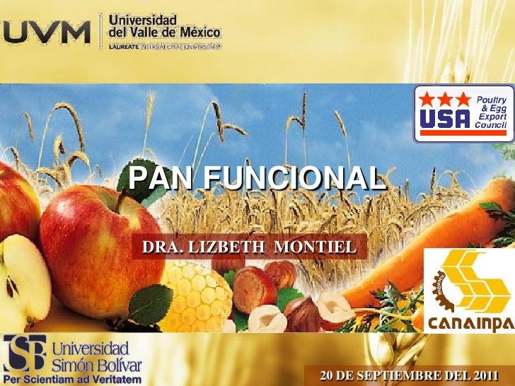 PAN FUNCIONALDRA. LIZBETH MONTIEL                20 DE SEPTIEMBRE DEL 2011