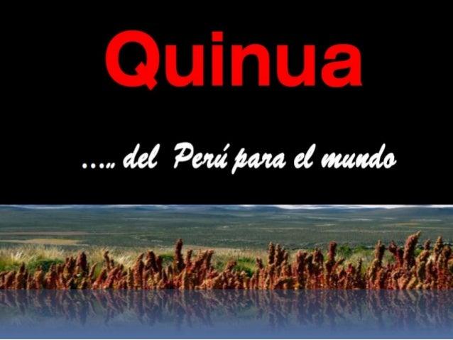 ….un legado a la  humanidad…  La variedad de quinua Roja, Blanca o Negra, tienen los mismos valores nutricionales y aminoá...