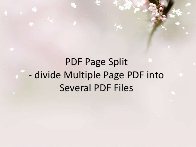 PDF Page Split- Hoe to divide Multiple page PDF files into Several PDF files
