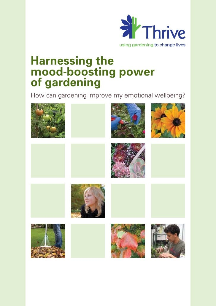 Harnessing the mood-boosting power of gardening How can gardening improve my emotional wellbeing?