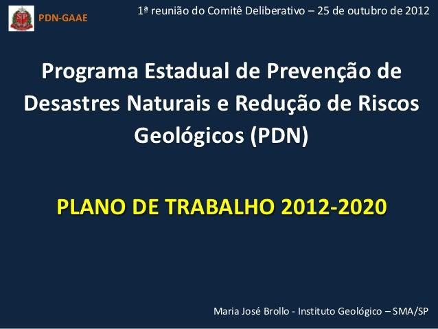 Programa Estadual de Prevenção de Desastres Naturais e Gestão de Riscos Geológicos - Plano de Trabalho de curto e médio prazos 2012-2020. (25out2012)