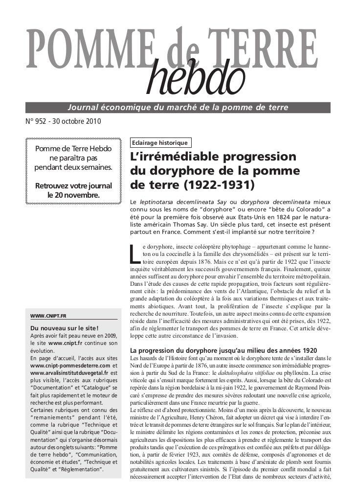POMME de TERRE    hebdo       Journal économique du marché de la pomme de terreN° 952 - 30 octobre 2010                   ...