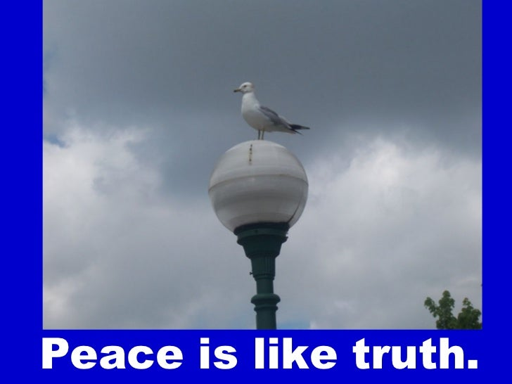 Peace For Everybody