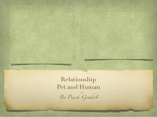 Relationships presentation