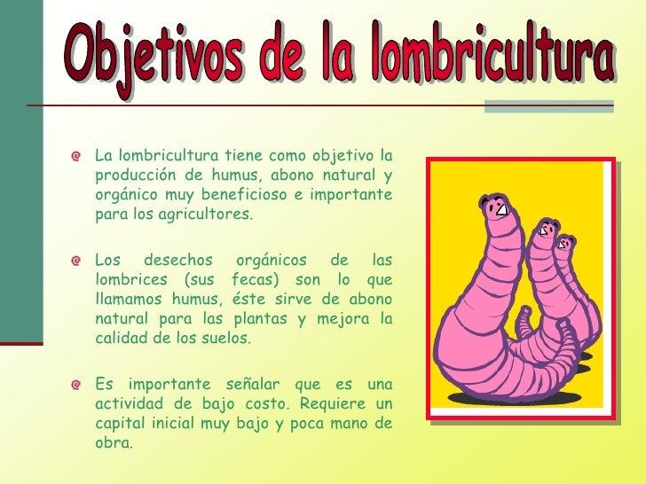 El portal para los niños de las lombrices