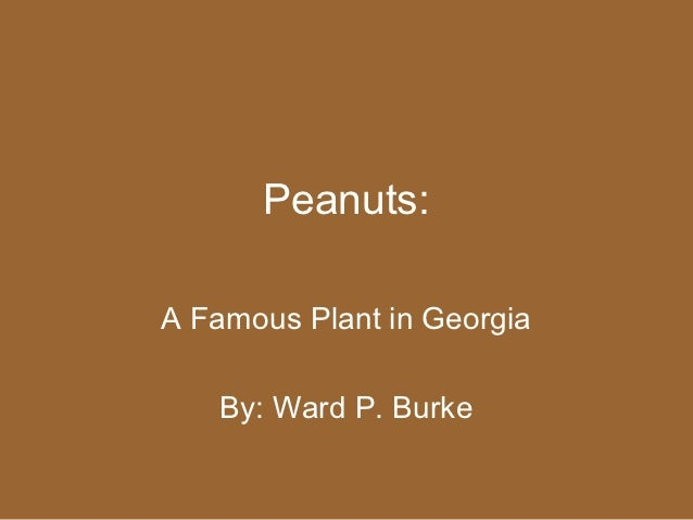 Peanuts:A Famous Plant in Georgia   By: Ward P. Burke