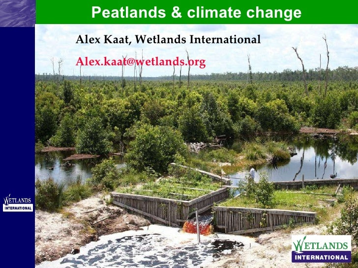 Peatlands & climate change Alex Kaat, Wetlands International [email_address]