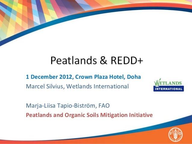 1 December 2012, Crown Plaza Hotel, DohaMarcel Silvius, Wetlands InternationalMarja-Liisa Tapio-Biström, FAOPeatlands and ...