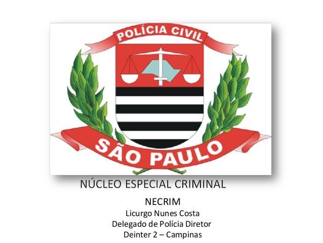 NECRIM Licurgo Nunes Costa Delegado de Polícia Diretor Deinter 2 – Campinas