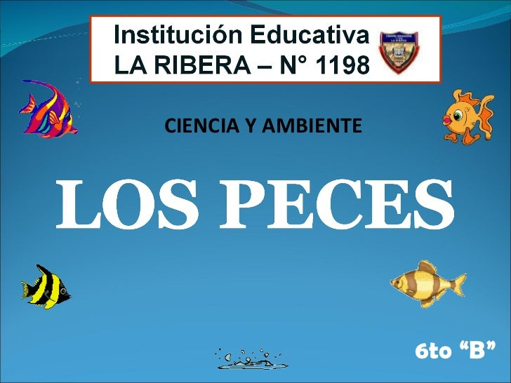 Peces 6to b