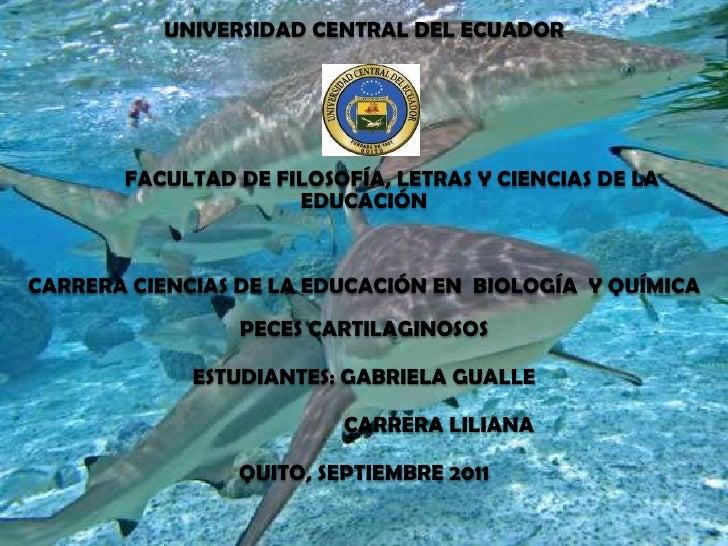 UNIVERSIDAD CENTRAL DEL ECUADOR          FACULTAD DE FILOSOFÍA, LETRAS Y CIENCIAS DE LA EDUCACIÓN  CARRERA CIENCIAS DE ...