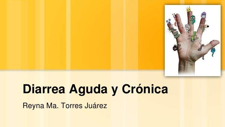 Diarrea Aguda y Crónica<br />Reyna Ma. Torres Juárez<br />