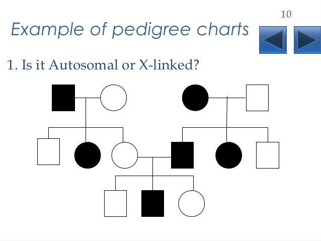 Sex linked pedigrees