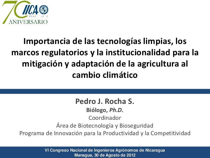 Importancia de las tecnologías limpias, losmarcos regulatorios y la institucionalidad para la  mitigación y adaptación de ...