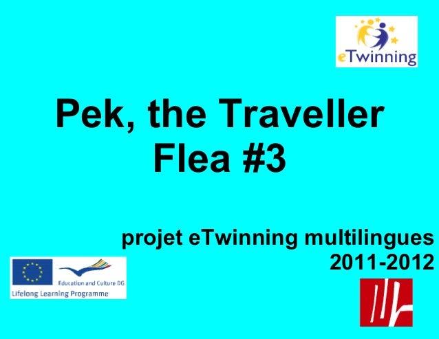 Pek, the Traveller     Flea #3   projet eTwinning multilingues                     2011-2012