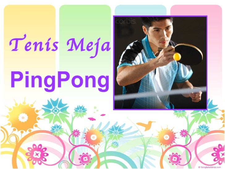 PingPong Tenis Meja