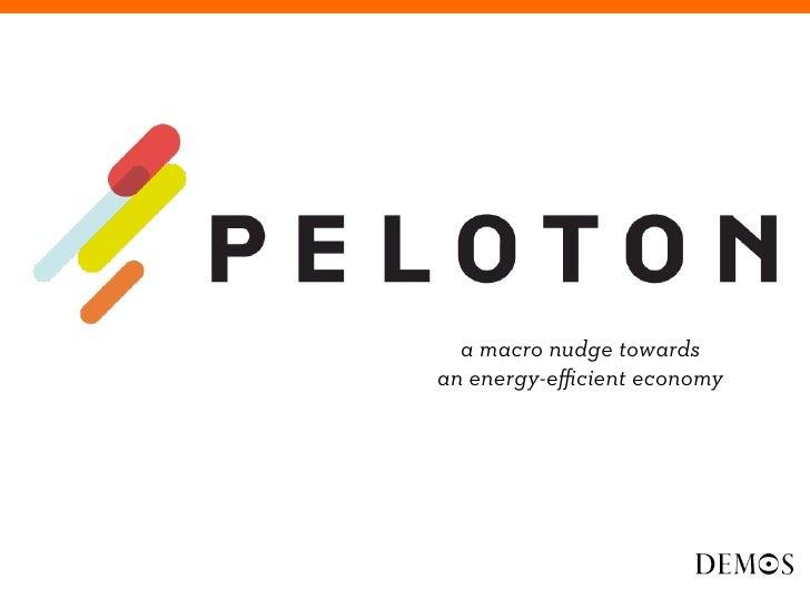 PELOTON macro-nudge towards an energy-efficient economy