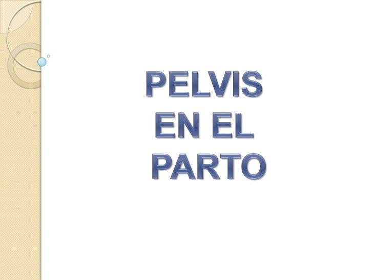 PELVIS <br />EN EL<br /> PARTO <br />
