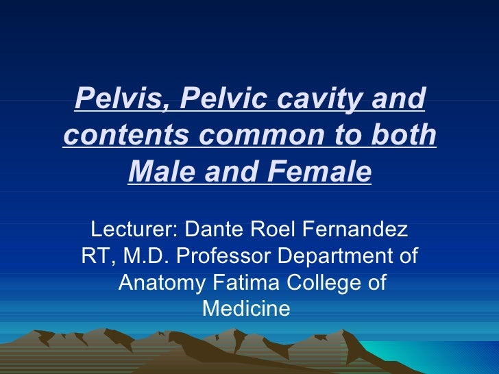Pelvis, Pelvic cavity and contents common to both Male and Female Lecturer: Dante Roel Fernandez RT, M.D. Professor Depart...