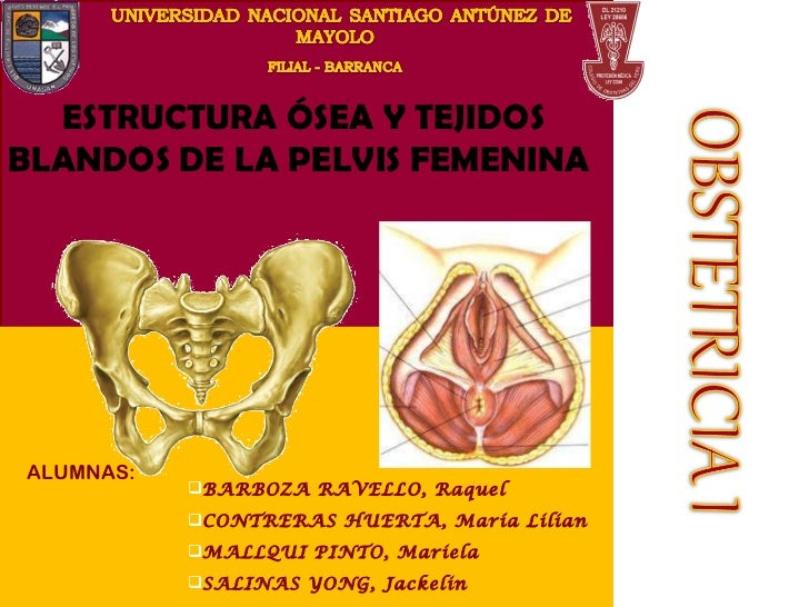<ul><ul><li>BARBOZA RAVELLO, Raquel </li></ul></ul><ul><ul><li>CONTRERAS HUERTA, María Lilian  </li></ul></ul><ul><ul><li>...