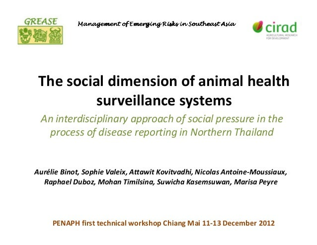 The social dimension of animal health surveillance systems: An interdisciplinary approach of social pressure in the process of disease reporting in Northern Thailand