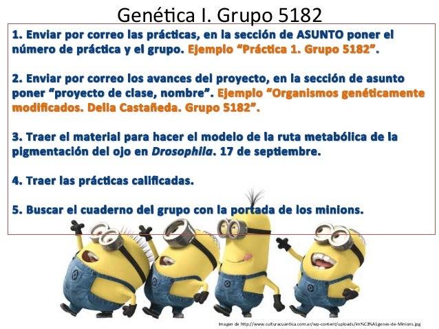 Gené%ca  I.  Grupo  5182   Imagen  de  h7p://www.culturacuan%ca.com.ar/wp-‐content/uploads/im%C3%A1genes-‐de...