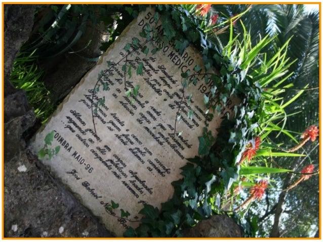 balada de um banco de jardim os azeitonas : balada de um banco de jardim os azeitonas:Penedo da Saudade-Coimbra