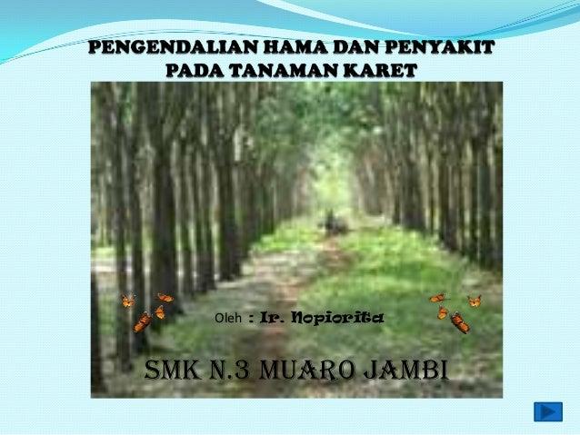 Oleh : Ir. NopioritaSMK N.3 Muaro Jambi