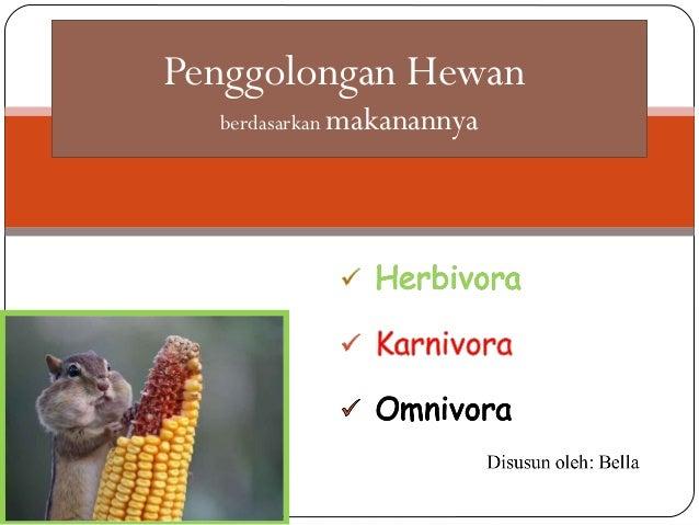 Penggolongan Hewan Karnivora Herbivora Omnivora