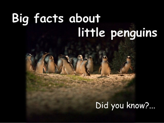 Did you know?...