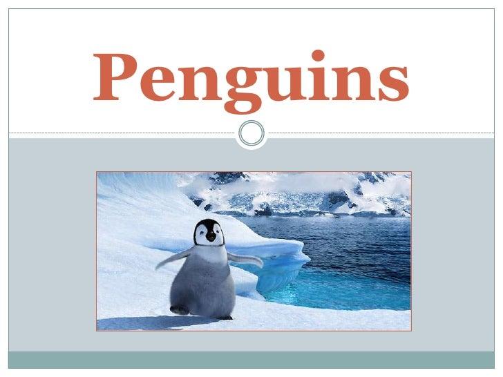 Penguins<br />