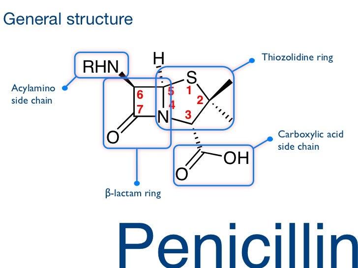 penicillin-balloons-2-728.jpg?cb=1421703