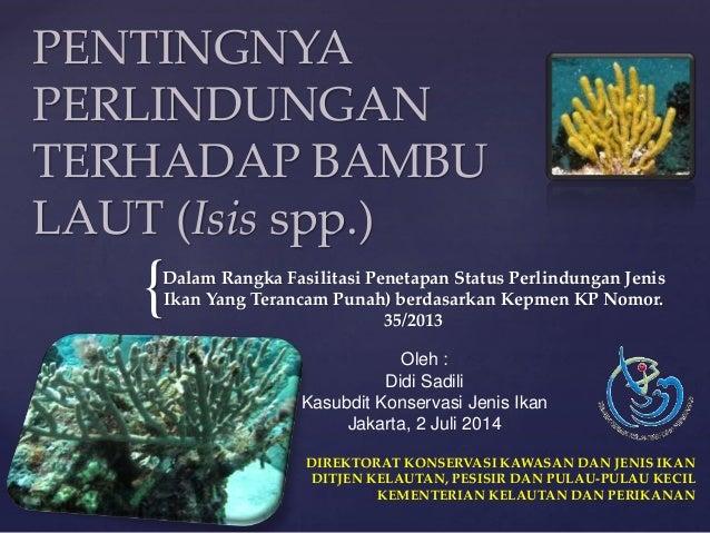 { PENTINGNYA PERLINDUNGAN TERHADAP BAMBU LAUT (Isis spp.) Dalam Rangka Fasilitasi Penetapan Status Perlindungan Jenis Ikan...
