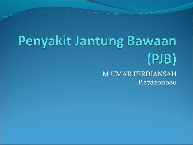 M.UMAR FERDIANSAH P.2782011080